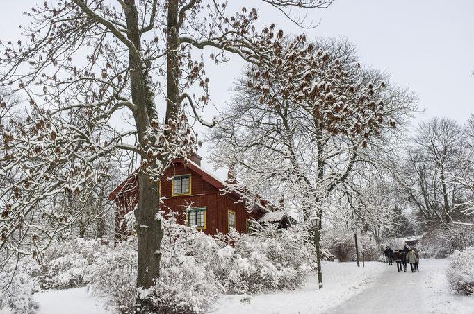 tuukka ervasti skansen / imagebank.sweden.se