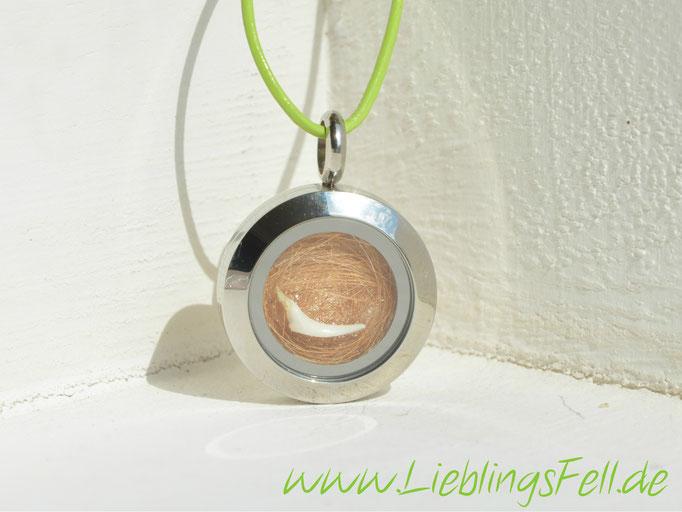 Kleines Edelstahlamulett (2 cm) mit einer grünen Lederkette (die Kette ist frei wählbar) - 49€ - (Bild K20)