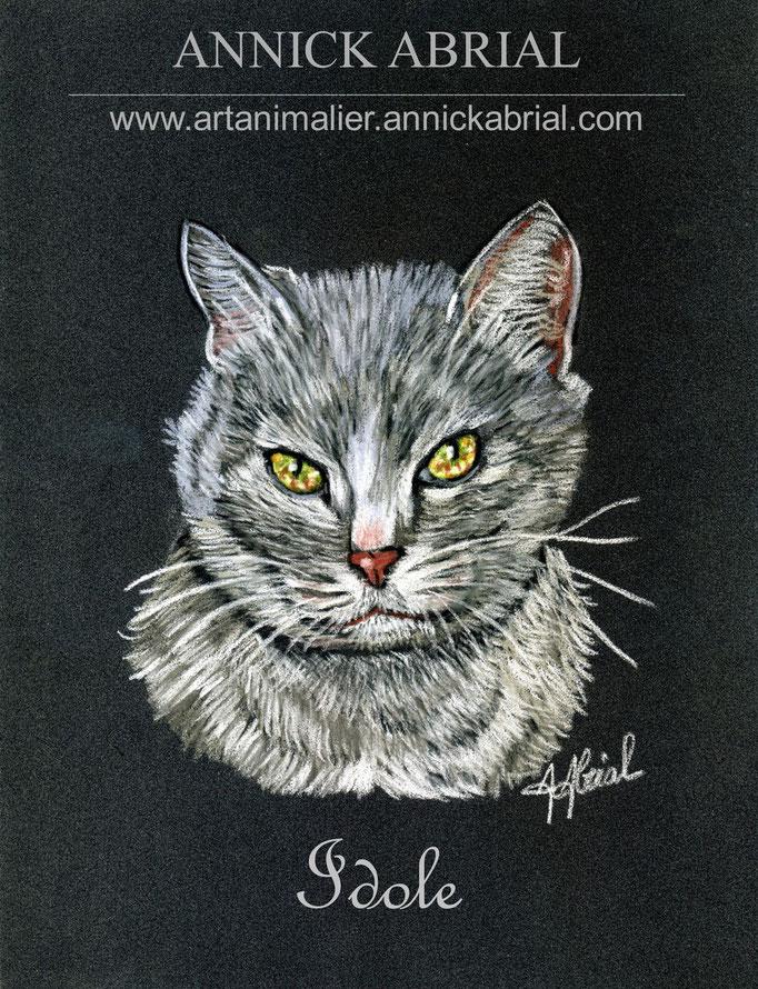 Portrait sur commande aux pastels de Idole chat gris 2015