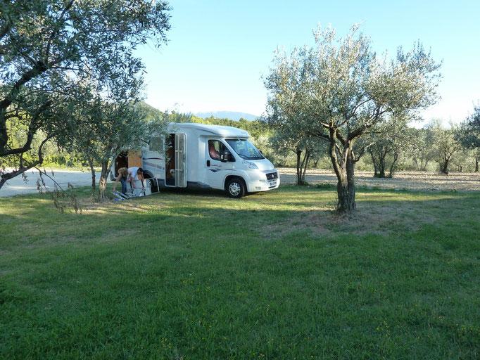 Piégon dans la Drôme (26) Ce n'est pas une aire mais...un accueil France Passion, parmi des oliviers...