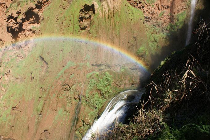 Regenbogen trotz Sonne und keinem Regen