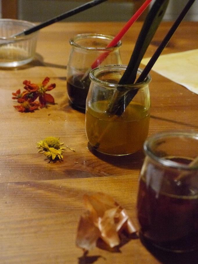 Fabrication d'encre végétale (pelure d'Oignon, fleurs d'Anthemis et de Cosmos)