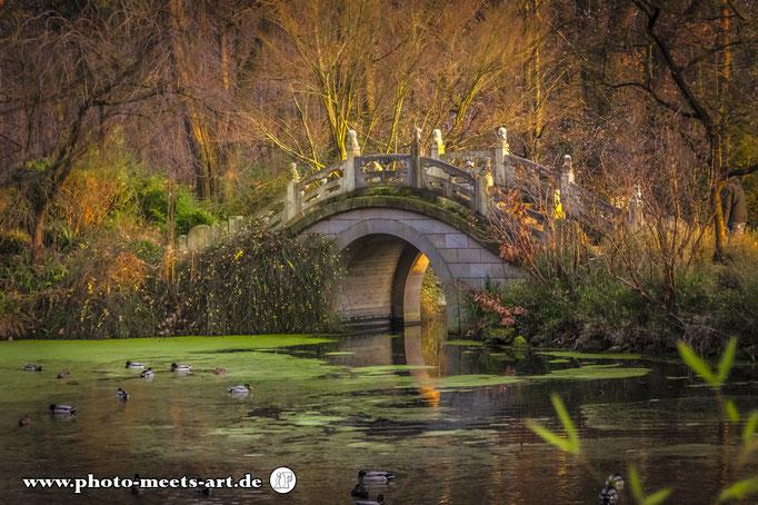 Chinesischer Garten, Zoo Duisburg  #zoo #zooduisburg #duisburg  #chinesischergarten #tao #art #architexture #ivanofargnoli #photo_meets_art #photography