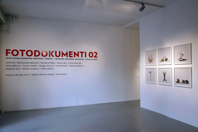 Salon of the Museum of Contemporary Art in Belgrade, 2012
