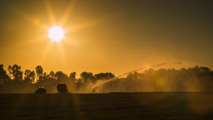 beregening van de akkers in strijd tegen de droogte
