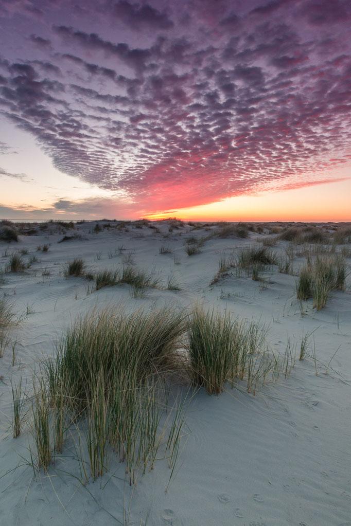 Zonsopkomst duinen Noordzeestrand Schiermonnikoog