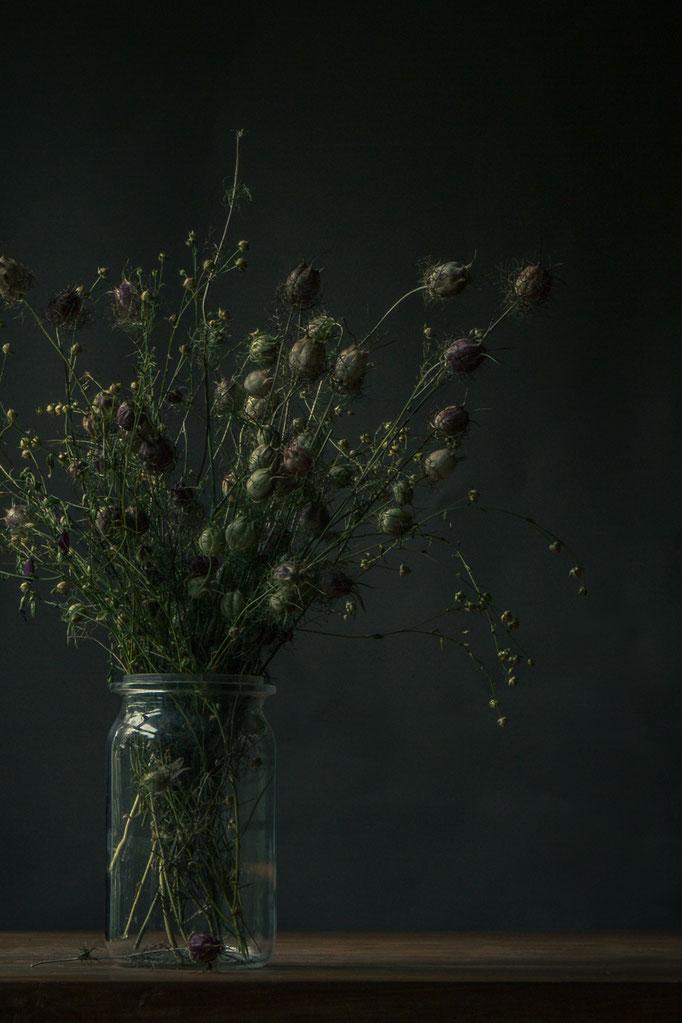 Droogbloemen stilleven