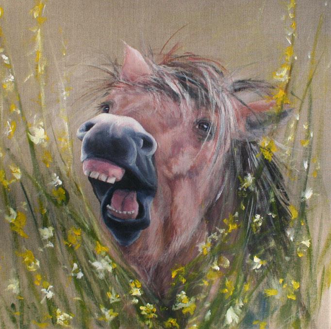 Lachend paardje, acryl op linnen 50 cm x 60 cm