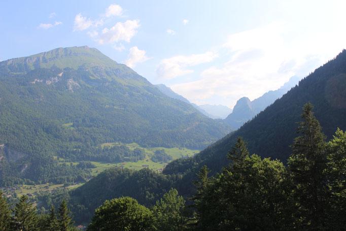 Schöne Aussicht vom Syteli - hier der Blick in Richtung Gental.    Bild: C. Schatzmann