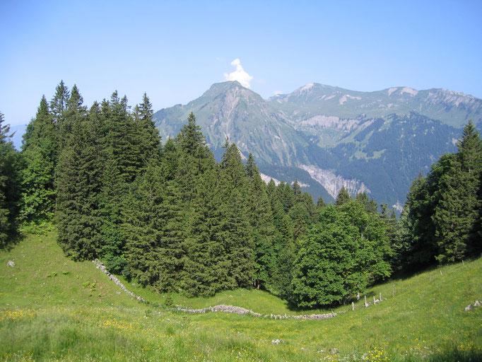 Blick ins Obwaldnerland.  Bild: C. Schatzmann