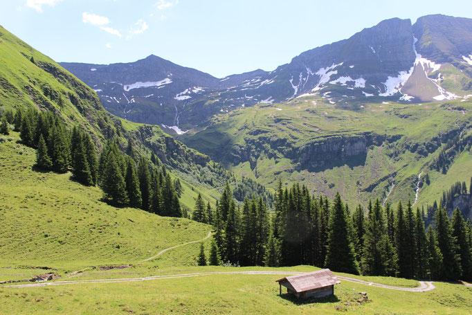 Beim Lütschentälti: Blick zurück in den Talkessel der Alp Tschingelfeld.  Bild: C. Schatzmann