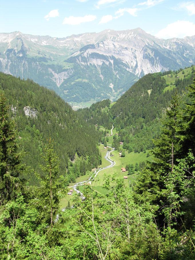 Blick talauswärts, kurz vor Erreichen der Höhenstufe.  Bild: C. Schatzmann