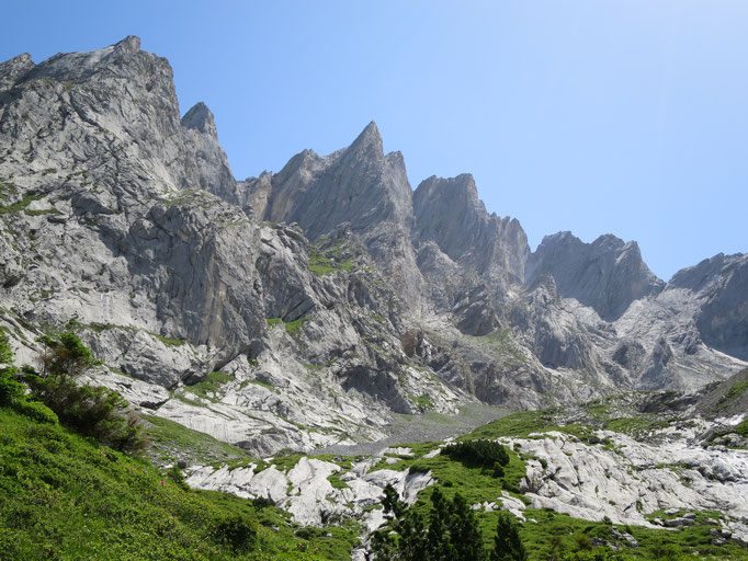 Blick ins Ochsental mit der eindrückliche Engelhorngruppe.   Bild: Andreas Staeger