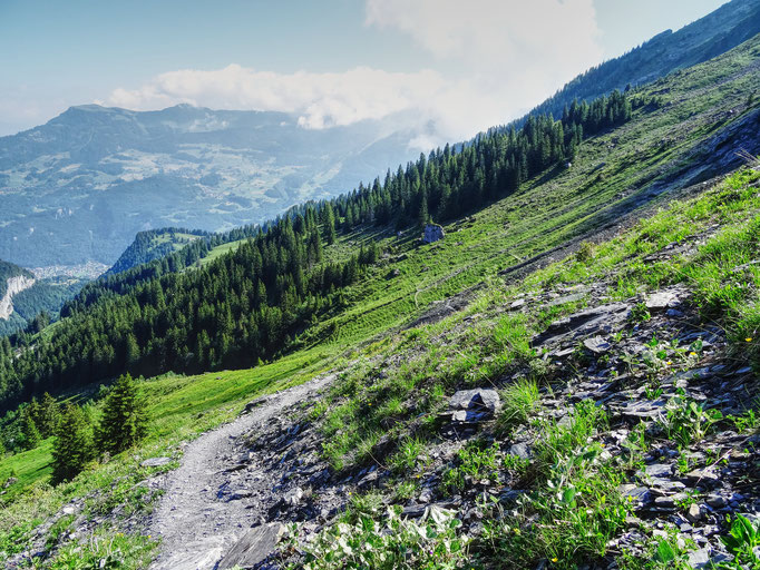 Auf der Alp Grossreichenbach: Blick zum Graaggistein. Bild: Claudia Schatzmann