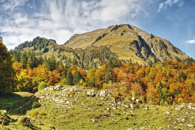 Herbststimmung auf dem Brüniger Älpeli.  Bild: C. Schatzmann