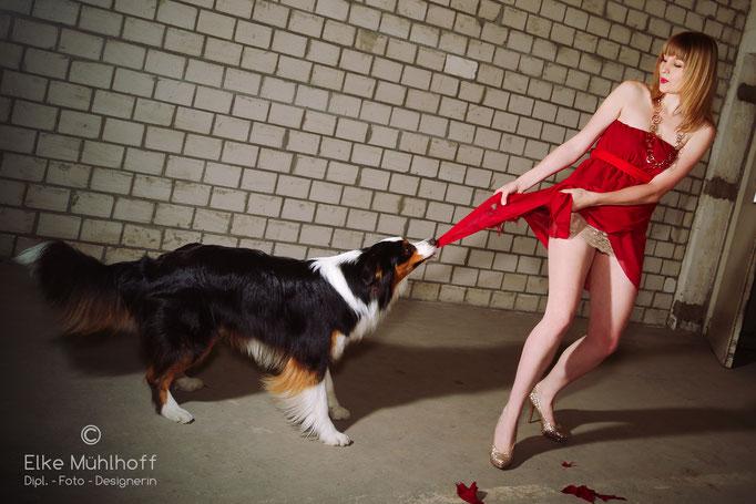 trash the dress mit Hund Beauty