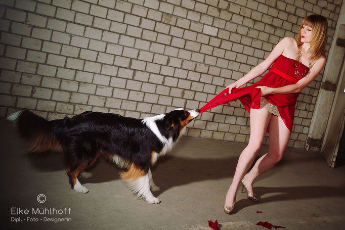 trash the dress mit Hund Beauty