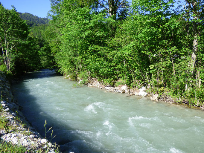 Ruhiger Flußverlauf