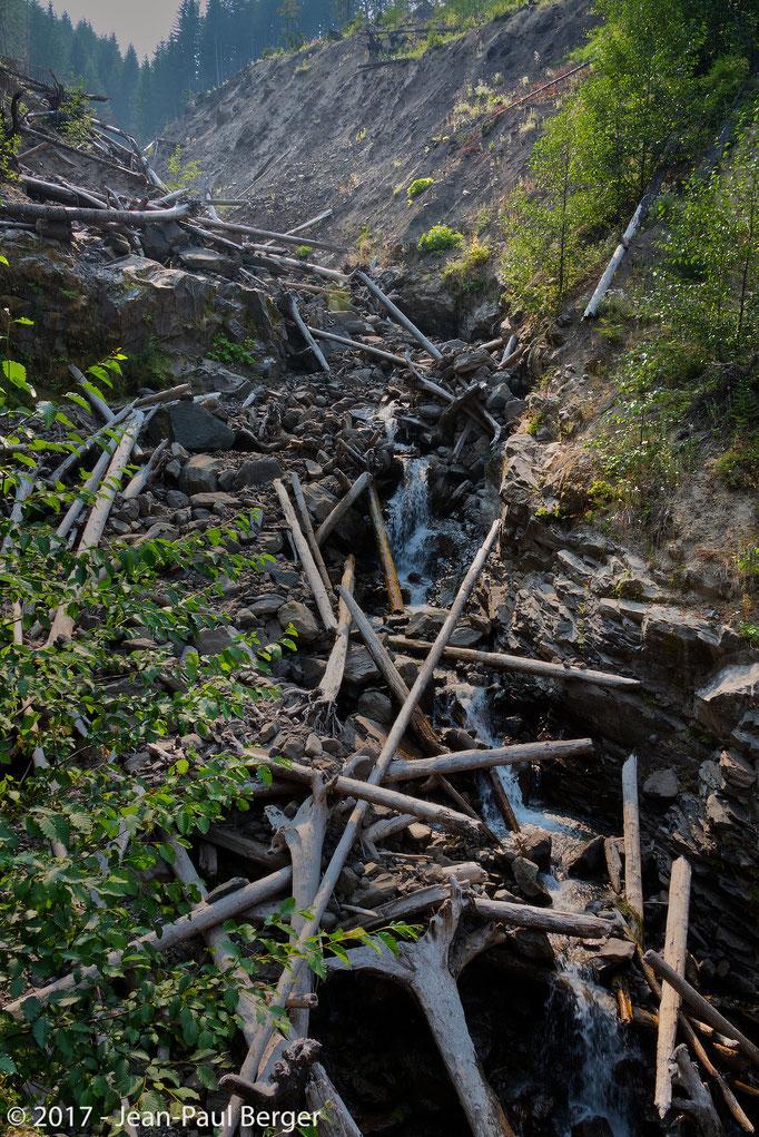 Mt St-Helens, versant Nord-Est - Des torrents de débris de roches et de boue, arrachent les arbres, détruisant les routes et les ponts sur plus de 30 km.
