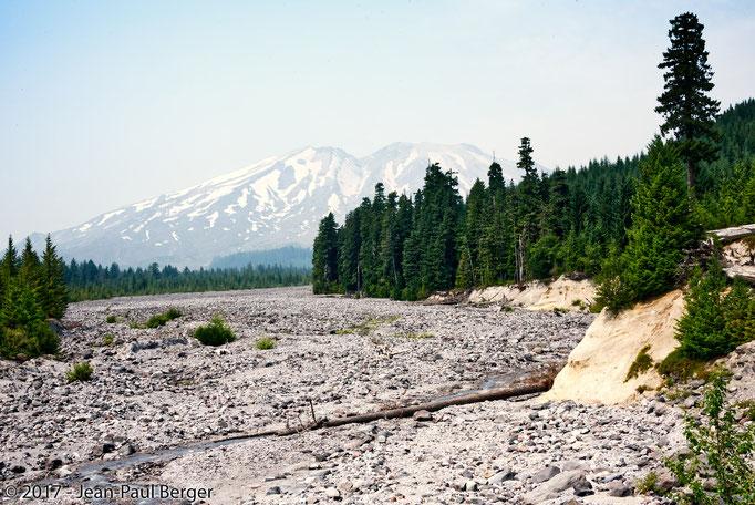 Mt St-Helens - Lit de rivière, passage d'un lahar le 18 Mai 1980