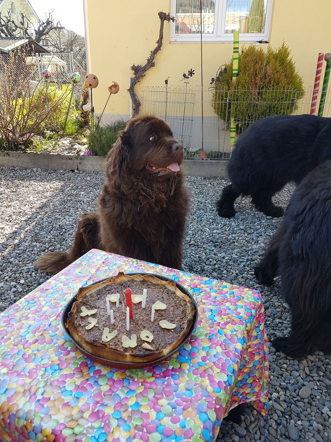 Muss ich den Kuchen teilen?