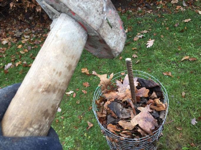Der Vorschlaghammer hat mit etwas Macht den Weg durch das Laub gefunden