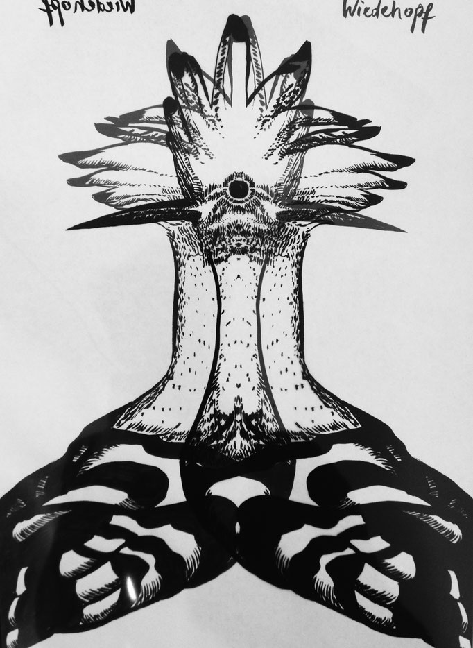 Bird Drawing / Ink / A4