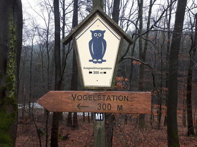 Vogelstation Essenthoer Mühle