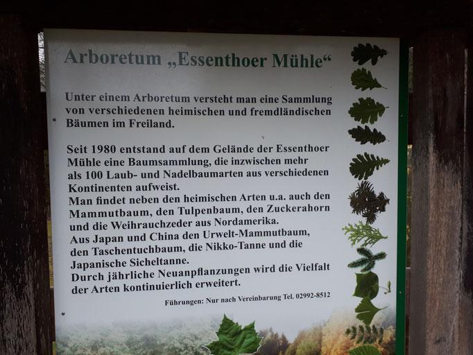 Essenthoer Mühle