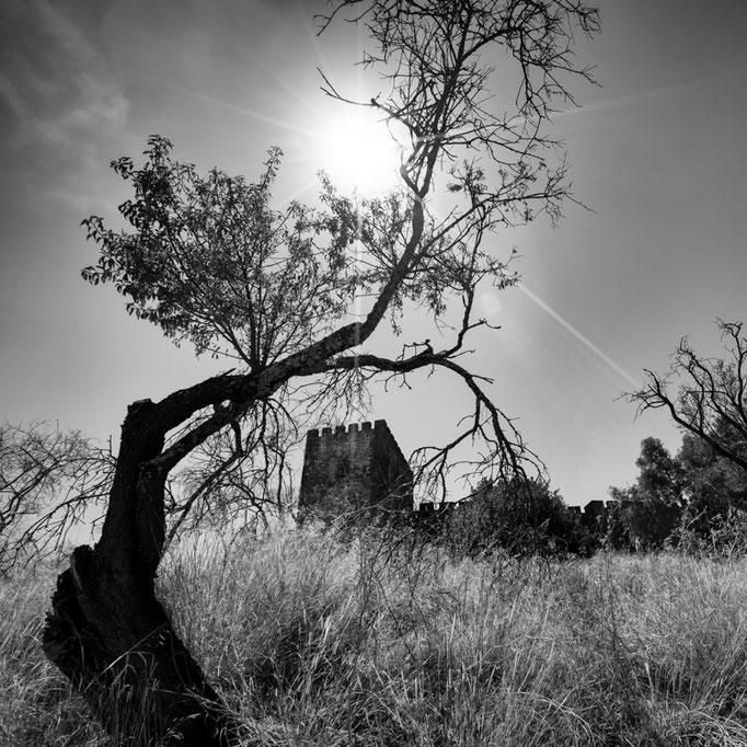 Castelo Mouro de Silves