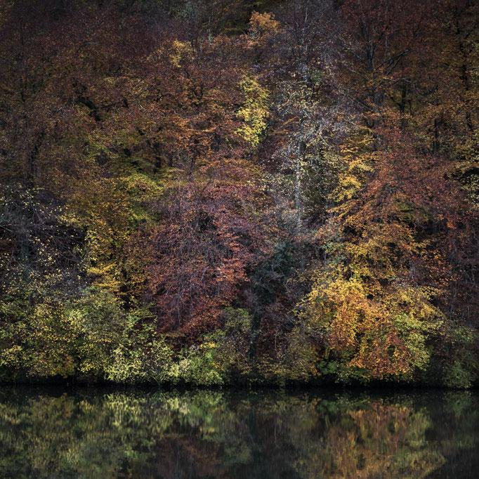 La Moselle en couleur