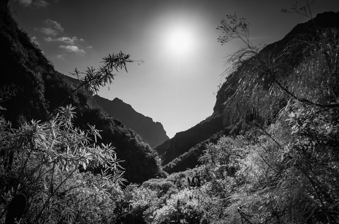 TENERIFFA - Barranco del Inferno