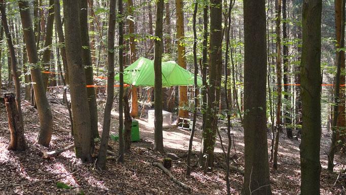 Baumzelt Solling, Bild: Baumhaushotel Solling.