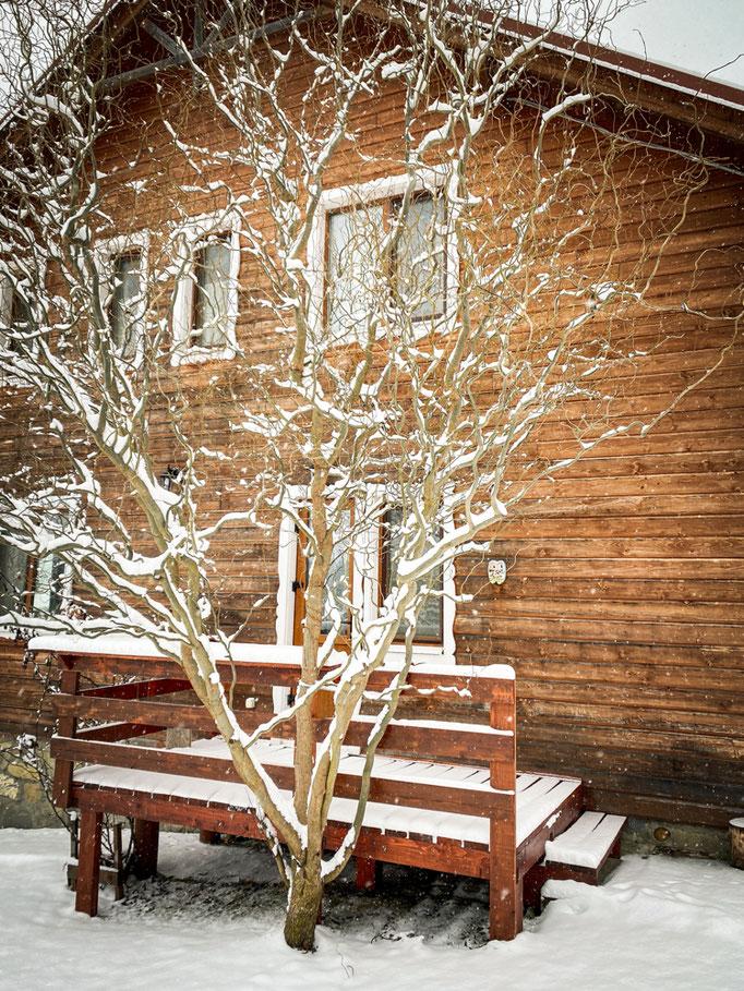 Зима в Карпатах. Верховина