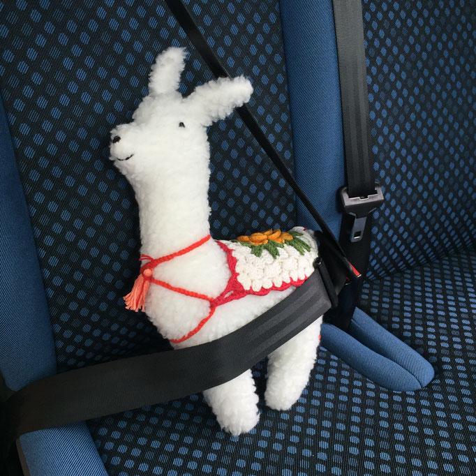 Ein glückliches Lama auf dem Weg zum Festival!