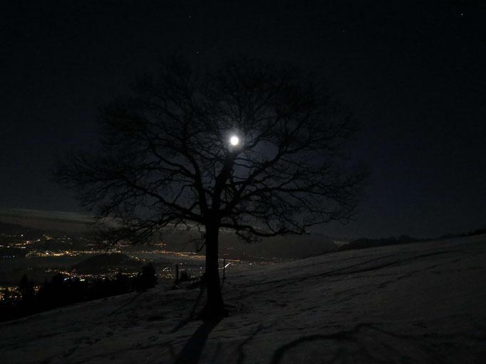 Mondaufgang unterer Zürichsee