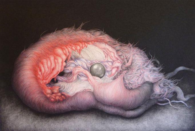 Specimen 8 (2011), color pencil on paper, 44 x 65 cm
