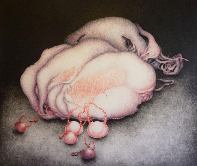 Vruchtlichaam/ Fruitbody (2011), color pencil on paper, 51 x 61 cm