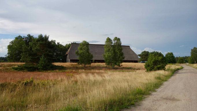 Weseler Heide