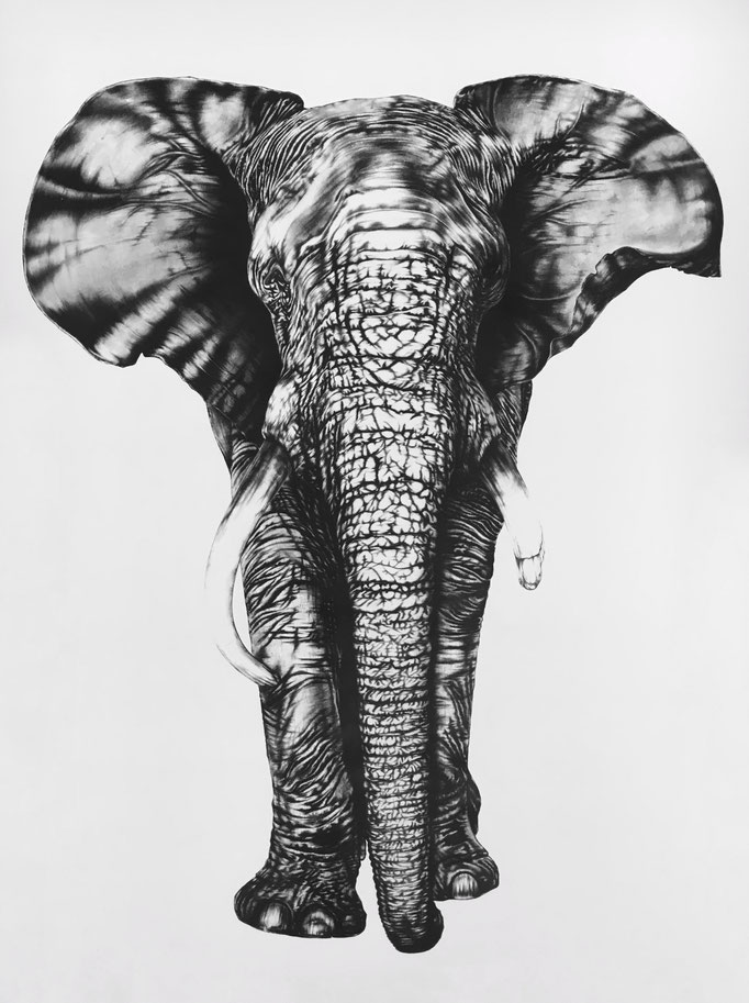 One-eyed Elephant | 2017 | 1.9 x 1.45m | Charcoal on Fabriano-paper | Current Location: Baden, Switzerland *****