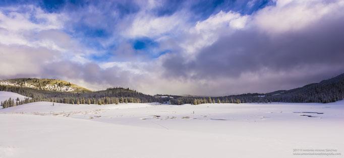 En la soledad del invierno  / In the winter solitude