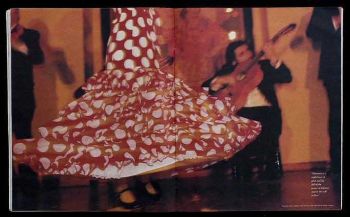 Seville's Siren Song, Flamenco,  for The New York Times Magazine