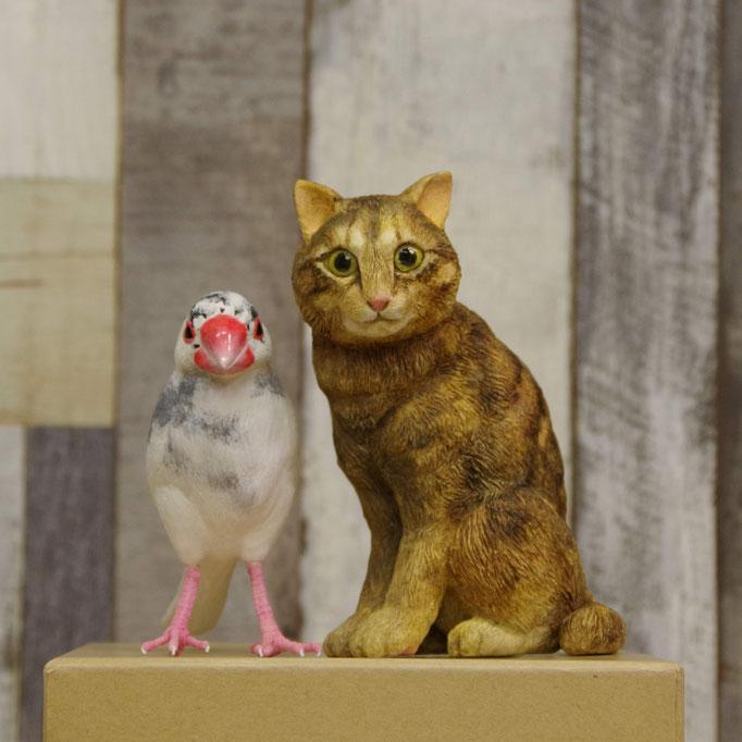 Cat and Java Sparrow ネコと文鳥のウェルカムドール