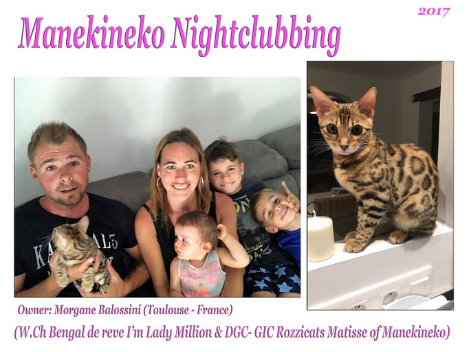 Manekineko Nightclubbing 2017