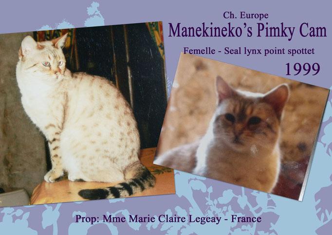 Manekineko's Pimky Cam - Mme Marie Claire Legeay - Oth'omne x Bataro