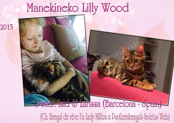 Manekineko Lilly Wood 02/2015