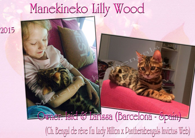 Manekineko Lilly Wood 02/2015