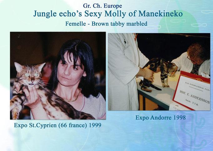 Jungle Echo's Sexy Molly of Manekineko