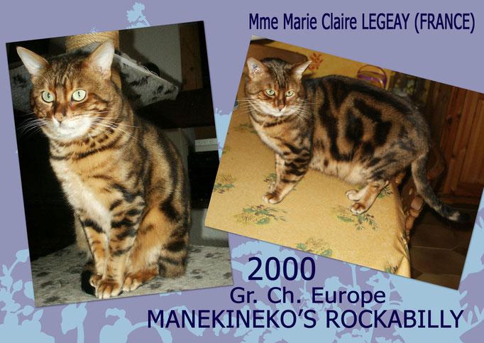 Manekineko's Rockabilly - Mme Marie Claire Legeay - Oth'omne x Pumbaa