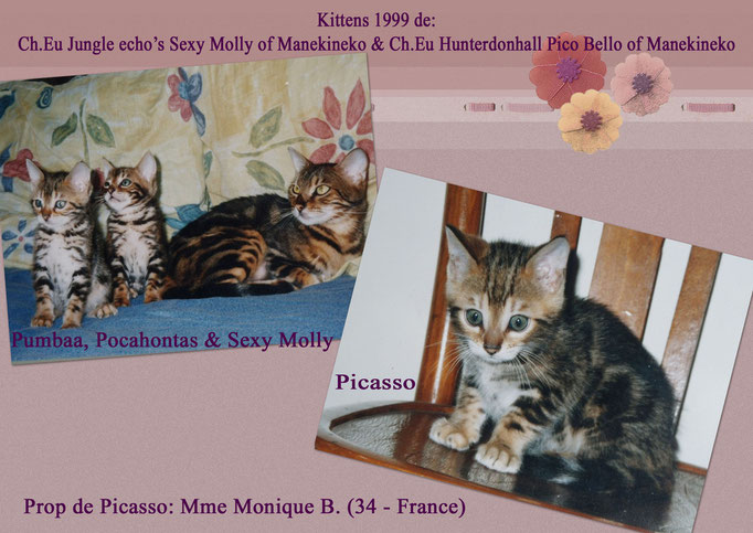 Manekineko's Picasso - Mme Monique Blasquez - Sexy Molly x Pico Bello
